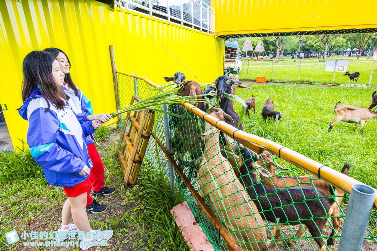 [宜蘭景點]2020武荖坑滑水同玩節/高空滑水+露營烤肉+餵羊互動+闖關遊戲/宜蘭親子景點推薦