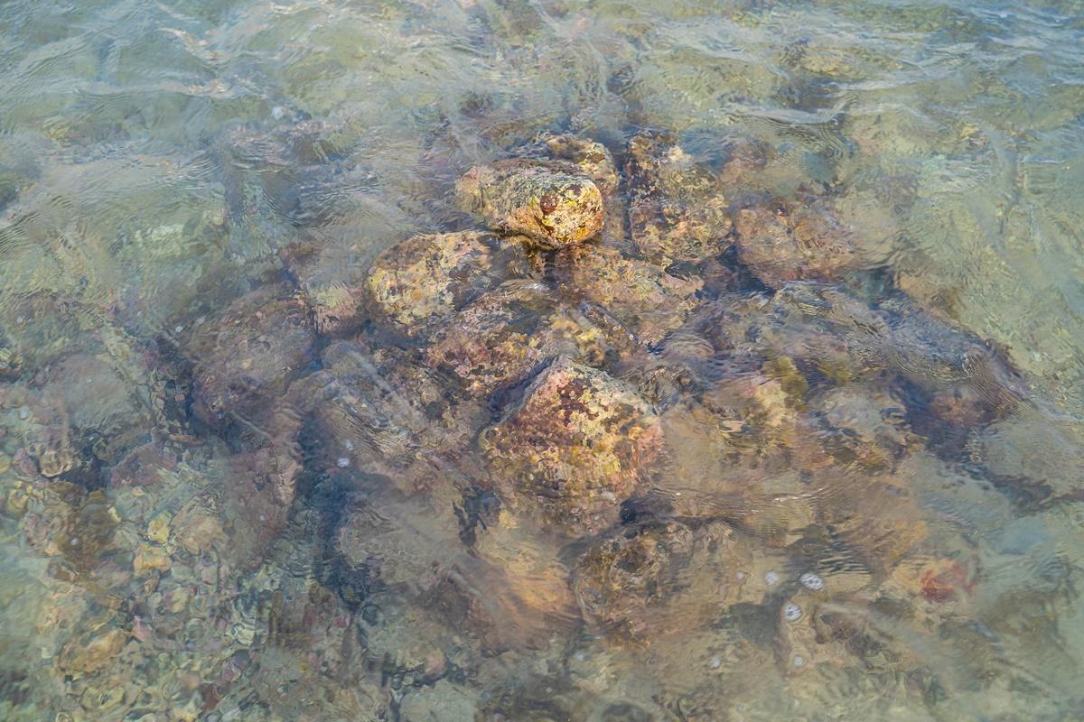 [澎湖行程]阿婆抱墩/全世界唯一的抱墩捕魚法/現抓石斑魚超有趣/澎湖抱墩體驗推薦
